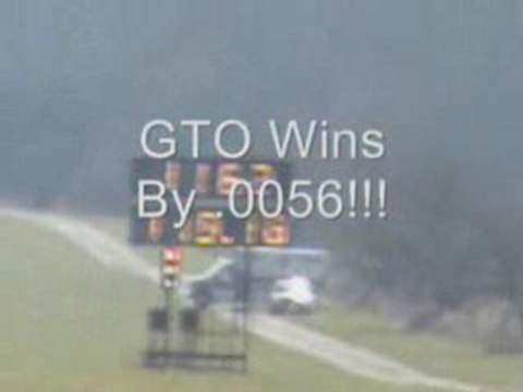 GTO vs Shelby GT 500