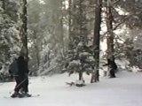 Regis au ski