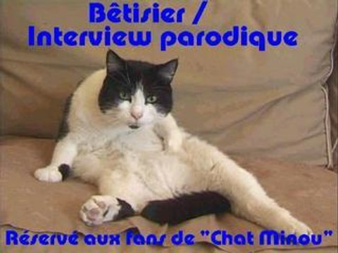 Betisier interview parodique de la serie Chat Minou