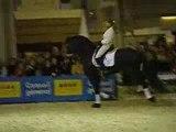 frisons salon du cheval 2007