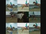 Gamin,un amour de cheval