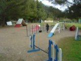 2008 03 26 entraînement agility 010