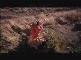 clip comedie musical - le roi lion - il vit en toi