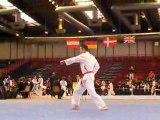 Tournoi international paris technique poumsé pal-jang David