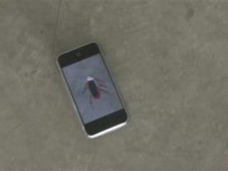 iPhone Cockroach !