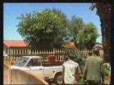 Regis deracine un palmier avec sa voiture