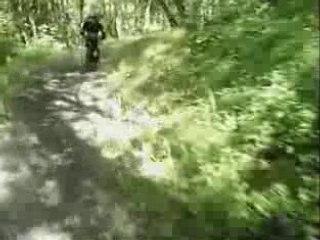 frit raide 2006