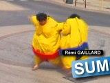 sumo !!!