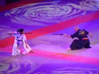 Haidong gumdo demonstration bercy 2008