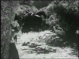 Buster Crabbe in Devil Riders; DVD w/ Cowboys & Horses
