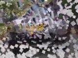 Transition Invidia avec sourdines - sans sourdines