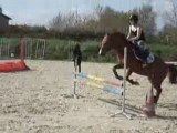 moi et mon poney en saut d'obstacle