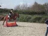 moi et mon poney en saut d'obstacle 02jamais faire confience