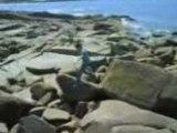 Saut de rocher 3