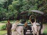 SRI LANKA 08 2002