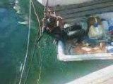 maria ki plonge dans le port