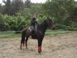 mon cheval ki cabre