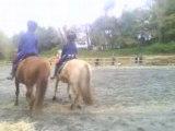 caroussel chevaux