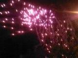 feux  artifices 2008