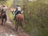 Course Endurance Sommant 2008