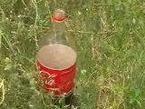 Record au Qatar : Geyser de Coca et de mentos par Philippe!