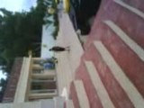 Borj Cedria - Tunisie (2008) Vidéo #4