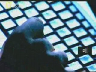 Les Hackers (National Geographic)