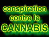 Le cannabis un fléau? Mouhahahahahahaha!!!! Laissez moi rire!!!!!!