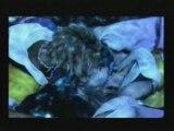 Ff10. Cinématique baiser