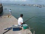 Pointe Saint Gildas : pêcheurs