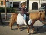 Lou-Ann poney à Douai