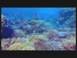 Bande-Annonce 1 Voyage sous les mers 3D