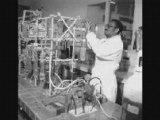 Cheikh Anta Diop : Falsification de l'Histoire