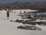 Galapagos Islands travel: Sea lions, iguanas and children