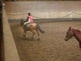 équitation et chevaux 051