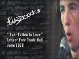 Buzzcocks - Ever Fallen In Love