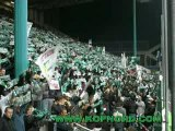 ASSE magic fans 91