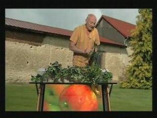 Visionnez les Cours Vidéo de Les Fruits - Cours de jardinage