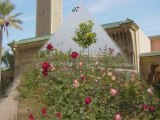 Découverte de Marrakech