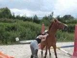 non je ne tombe pas je saute de mon poney mdr !!!