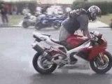 Street Bikes - Nice stoppies and wheelies
