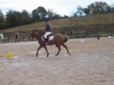 Concours pony-games niort dont on se souviendra ^^