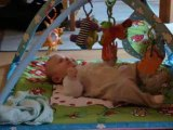 Pacôme aime son tapis d'éveil