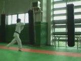 karate karateka du dimanche loupé nul regis best koreus con