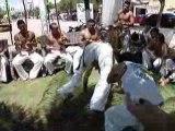 Grupo Capoeira Brasil Ceara