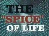 Limp Bizkit - Fred Durst - Love Chain part 3 of 4