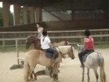 Parcours d'obstacles avec mon Carou pour mon obstacle Galop4