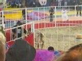 Intervilles 2008 Bergues vs St Amand les Eaux