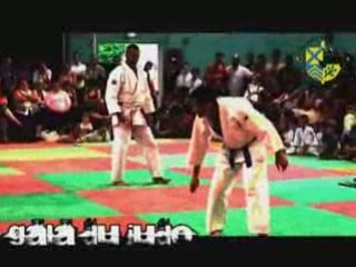 Gala de judo 2008