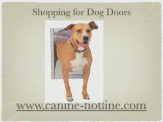 Dog Doors, Pet Doors, Cheap Dog Doors